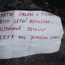 sibir_133